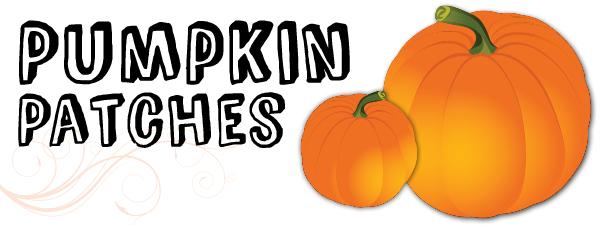 Houston-Area Pumpkin Patch