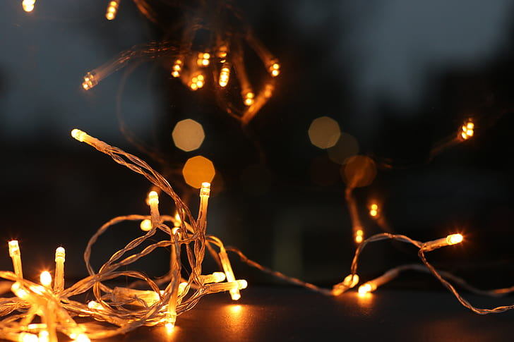 Holiday Lighting Professionals Guide